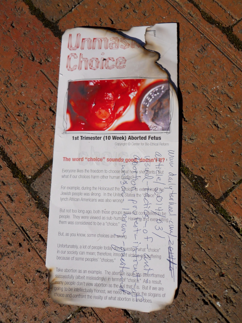pro choice someone at unc lit our brochure on fire click to enlarge